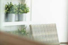 Vista della sedia accogliente in poco giardino attraverso la finestra Immagini Stock Libere da Diritti