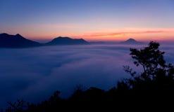 Vista della siluetta del cespuglio con il bello paesaggio Fotografia Stock