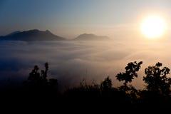 Vista della siluetta del cespuglio con il bello paesaggio Immagine Stock