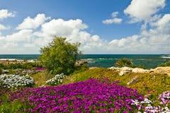 Vista della spiaggia. Fotografie Stock