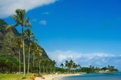 Vista della spiaggia del parco della spiaggia con le palme Fotografie Stock