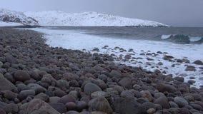 Vista della spiaggia delle pietre rotonde, giorno di febbraio Costa del mare di Barents archivi video