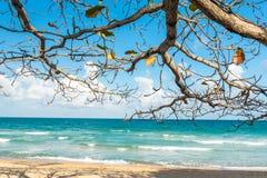 Vista della spiaggia di Chaweng Noi a Koh Samui Thailand Immagini Stock Libere da Diritti