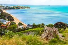 Vista della spiaggia di Cheltenham dalla testa Auckland Nuova Zelanda di Nord Fotografie Stock