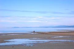 Vista della spiaggia di qualicum Fotografie Stock Libere da Diritti
