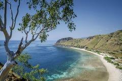 Vista della spiaggia e della costa vicino a Dili nel leste del Timor Est Fotografia Stock Libera da Diritti