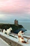 Vista della spiaggia e del castello di inverno con due cani Fotografia Stock