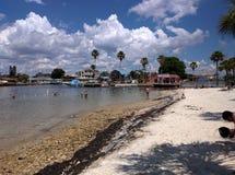 Vista della spiaggia su litorale con le palme delle case ed i nuotatori fotografie stock libere da diritti