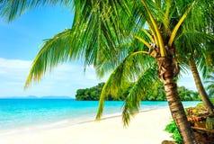 Vista della spiaggia tropicale piacevole con alcune palme intorno Immagini Stock Libere da Diritti