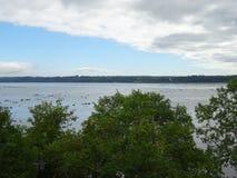 Vista della st Lawrence River dal cappuccio-Santé Fotografia Stock