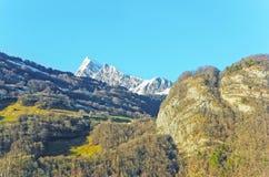 Vista della strada alle montagne ed alla foresta svizzere nell'inverno Immagine Stock Libera da Diritti