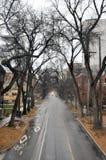 Vista della strada, lasciante in una distanza Immagine Stock Libera da Diritti