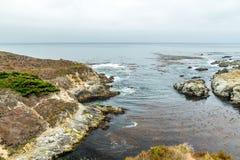 Vista della strada principale della costa del Pacifico Fotografie Stock Libere da Diritti