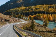 Vista della strada principale di Chuya del paesaggio di autunno ad Altay Mountains, Repubblica di Altai Fotografia Stock