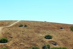 Vista della strada vicino al vulcano di Teide Fotografia Stock Libera da Diritti