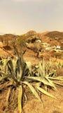 Vista della Tabernas-Almeria-spagna Fotografia Stock