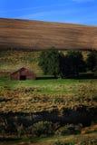 Vista della terra orientale dell'azienda agricola dell'Oregon Immagini Stock
