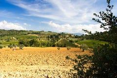 Vista della Toscana Fotografia Stock Libera da Diritti