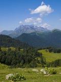 Vista della valle della montagna con i fiori fotografie stock