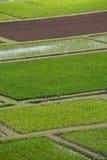 vista della valle di hanalei Fotografia Stock Libera da Diritti