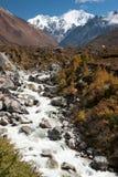 Vista della valle di Langtang, parco nazionale di Langtang, Rasuwa Dsitrict, Nepal fotografia stock libera da diritti