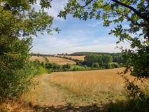 Vista della valle di scacchi in Hertfordshire immagine stock
