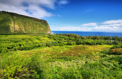 Vista della valle di Waipio in grande isola Immagine Stock