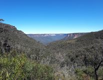Vista della valle e delle montagne con gli alberi di eucalyptus un chiaro giorno del cielo blu in Jamison Valley NSW Australia Fotografia Stock Libera da Diritti