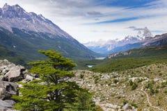 Vista della valle e, laghi, alberi e Fitz Roy Immagine Stock Libera da Diritti