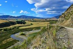 Vista della valle scenica di Lees in Nuova Zelanda Immagine Stock Libera da Diritti