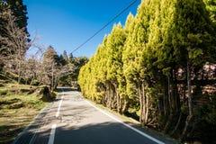 Vista della via Fotografie Stock Libere da Diritti