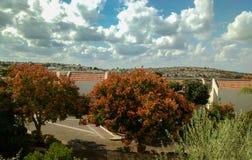 Vista della via con gli alberi, i tetti, la collina e nuvoloso rossi del fiore immagine stock