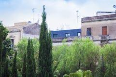 Vista della via di Catania, Sicilia, Italia - bello paesaggio urbano con le costruzioni ed il Cupressus antichi degli alberi di c fotografia stock libera da diritti