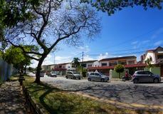 Vista della via di estate con l'ornamento dei rami di albero Fotografia Stock