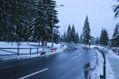 Vista della via di inverno Immagine Stock Libera da Diritti
