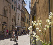 Vista della via a Lucca, la città di Puccini, Italia Fotografia Stock Libera da Diritti