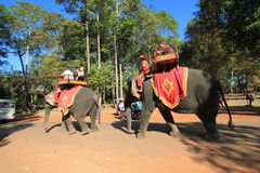 Vista della via in Siem Reap Immagine Stock Libera da Diritti