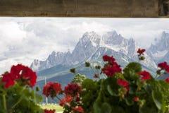 Vista delle alpi attraverso una finestra, con i fiori rossi nel foreg Fotografia Stock