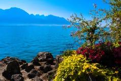 Vista delle alpi svizzere Fotografia Stock