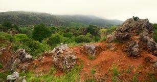 Vista delle colline che hanno invaso il legno attraverso le pietre Fotografia Stock Libera da Diritti