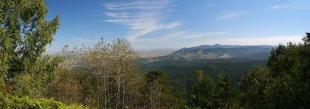 Vista delle colline pedemontana delle montagne di Altai Immagini Stock Libere da Diritti