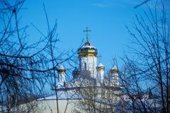 Vista delle cupole della chiesa ortodossa attraverso i rami degli alberi nell'inverno Fotografie Stock Libere da Diritti
