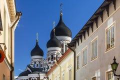 Vista delle cupole di Alexander Nevsky Cathedral, Tallinn, Estonia immagini stock