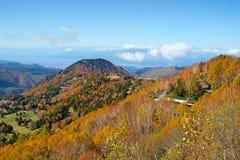 Vista delle foglie di autunno del pascolo di Shiga Kogen fotografia stock