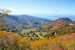 Vista delle foglie di autunno del pascolo di Shiga Kogen fotografie stock