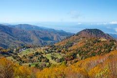 Vista delle foglie di autunno del pascolo di Shiga Kogen immagini stock libere da diritti