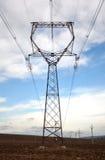 Vista delle linee elettriche di alta tensione e dell'albero Immagini Stock