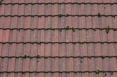 Vista delle mattonelle di tetto colorate terracota Fotografia Stock Libera da Diritti