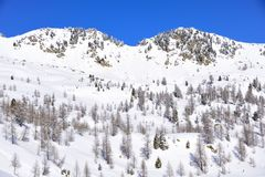 Vista delle montagne delle alpi con neve Immagini Stock