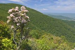 Vista delle montagne dalla cima Immagine Stock Libera da Diritti